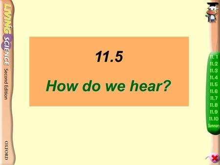 11.5 How do we hear? Put two fingers gently on your throat while you speak. What do you feel?