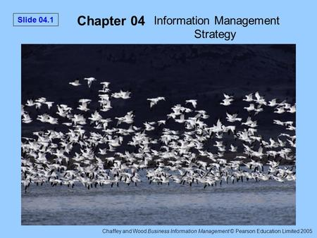 Chaffey and Wood Business Information Management © Pearson Education Limited 2005 Slide 04.1 Chapter 04 Information Management Strategy.