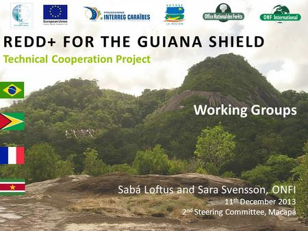 REDD+ FOR THE GUIANA SHIELD Technical Cooperation Project Working Groups Sabá Loftus and Sara Svensson, ONFI 11 th December 2013 2 nd Steering Committee,