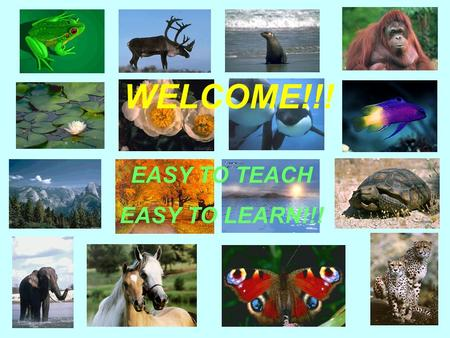 WELCOME!!! EASY TO TEACH EASY TO LEARN!!!. OUR ENVIRONMENT.