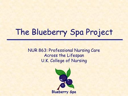 The Blueberry Spa Project NUR 863: Professional Nursing Care Across the Lifespan U.K. College of Nursing Blueberry Spa.