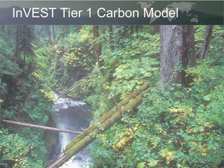 InVEST Tier 1 Carbon Model. In the Tier 1 model we estimate carbon stock as a function of land use / land cover. Storage indicates the mass of carbon.