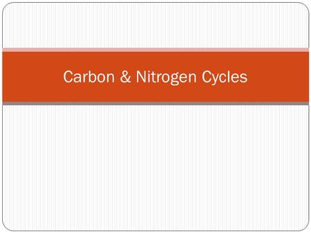 Carbon & Nitrogen Cycles. Recycling Matter All things living are made of matter Total amount of matter on Earth is limited, so it must be recycled again.