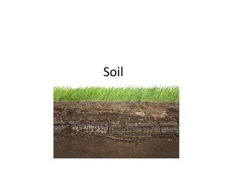 Soil. Soil is… A combination of weathered rock (sediments), humus (decaying organic matter such as dead plants and animals), air and water.