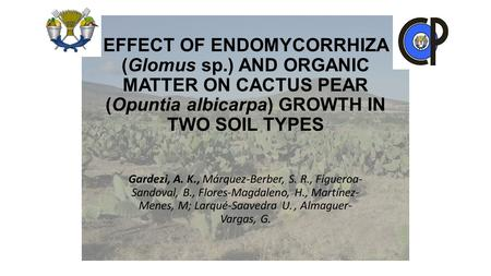EFFECT OF ENDOMYCORRHIZA (Glomus sp.) AND ORGANIC MATTER ON CACTUS PEAR (Opuntia albicarpa) GROWTH IN TWO SOIL TYPES Gardezi, A. K., Márquez-Berber, S.