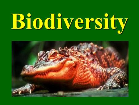 "Biodiversity. What is Biodiversity? Biological Diversity or Biodiversity ""The variety of life in all its forms, levels and combinations. Includes ecosystem."