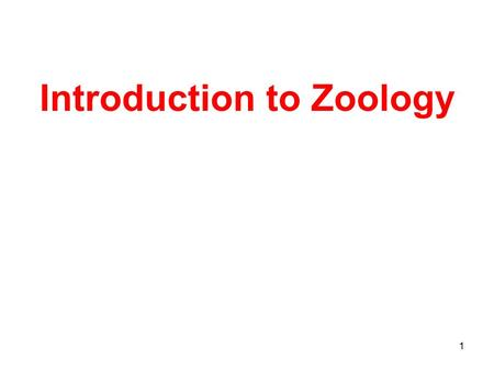 1 Introduction to Zoology. 2 Zoology Scientific study of the diversity of animal life.
