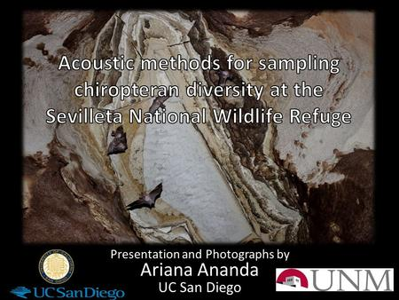 Presentation and Photographs by Ariana Ananda UC San Diego.