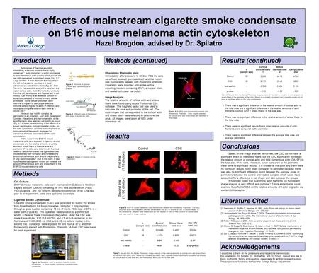 The effects of mainstream cigarette smoke condensate on B16 mouse melanoma actin cytoskeleton The effects of mainstream cigarette smoke condensate on B16.