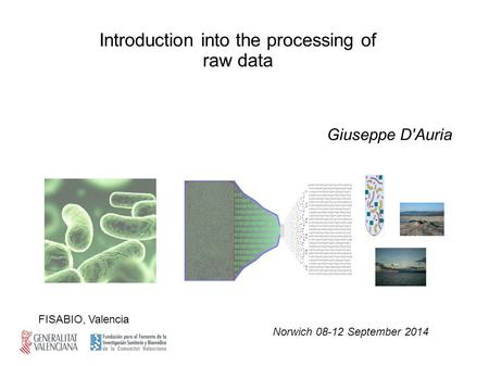 Giuseppe D'Auria Norwich 08-12 September 2014 FISABIO, Valencia Introduction into the processing of raw data.