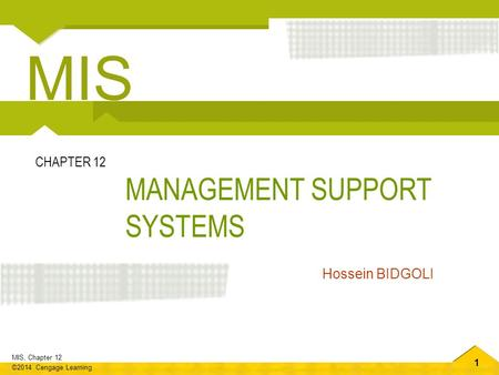 MIS CHAPTER 12 MANAGEMENT SUPPORT SYSTEMS Hossein BIDGOLI.