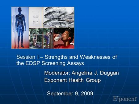 Session I – Session I – Strengths and Weaknesses of the EDSP Screening Assays Moderator: Angelina J. Duggan Exponent Health Group September 9, 2009.