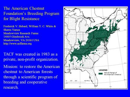 The American Chestnut Foundation's Breeding Program for Blight Resistance Frederick V. Hebard, William Y. C. White & Shawn Yarnes Meadowview Research Farms.