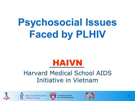 1 Psychosocial Issues Faced by PLHIV HAIVN Harvard Medical School AIDS Initiative in Vietnam.