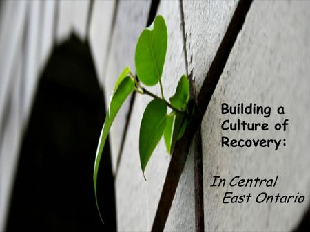 Building a Culture of Recovery: In Central East Ontario.