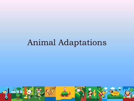 Animal Adaptations What is ecology? The study of the interactions that take place among organisms and their environment.
