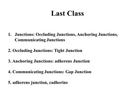 Last Class 1.Junctions: Occluding Junctions, Anchoring Junctions, Communicating Junctions 2. Occluding Junctions: Tight Junction 3. Anchoring Junctions: