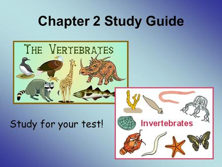 Chapter 2 Study Guide Study for your test!. Know the following vocabulary words: