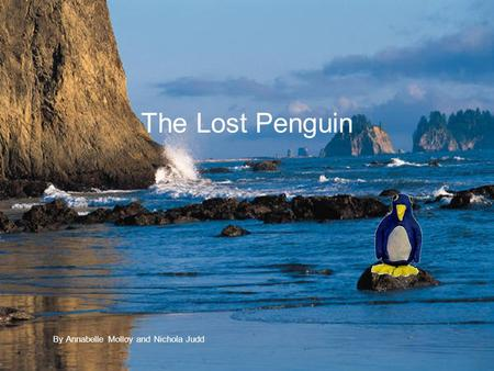 The Lost Penguin By Annabelle Molloy and Nichola Judd.