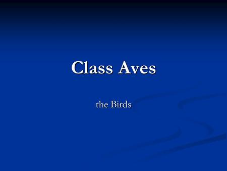 Class Aves the Birds. General Characteristics All members are homeotherms All members are homeotherms They can maintain a constant body temperature They.