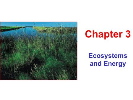 "Ecosystems and Energy Chapter 3. ""In the end, we will conserve only what we love, we will love only what we understand, we will understand only what we."