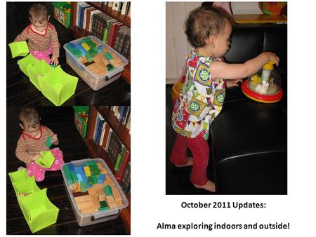 October 2011 Updates: Alma exploring indoors and outside!