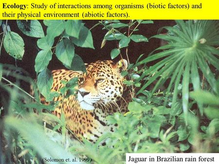 Essays on biotic factor