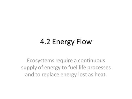 4.2 Energy Flow Ecosystems require a continuous supply of energy to fuel life processes and to replace energy lost as heat.
