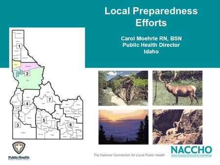 The National Connection for Local Public Health Local Preparedness Efforts Carol Moehrle RN, BSN Public Health Director Idaho.