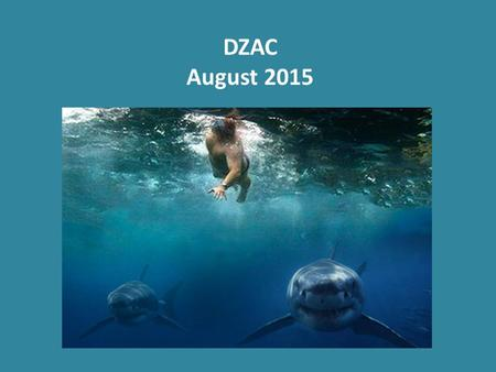 DZAC August 2015. Do you Swim With the Sharks? Are you Running with the Bulls?