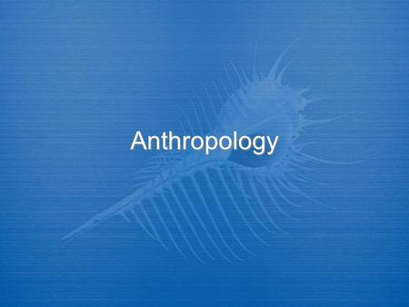 Anthropology. What is Anthropology?  Anthropology is the board study of humankind around the world and throughout time.  It is concerned with both the.