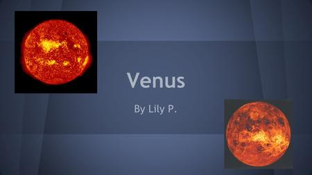 Venus By Lily P.. Introduction Oh! I didn't see you there! Welcome, welcome! This slide show is about the wonderful and amazing planet, Venus! Today you.