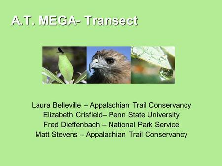 A.T. MEGA- Transect Laura Belleville – Appalachian Trail Conservancy Elizabeth Crisfield– Penn State University Fred Dieffenbach – National Park Service.
