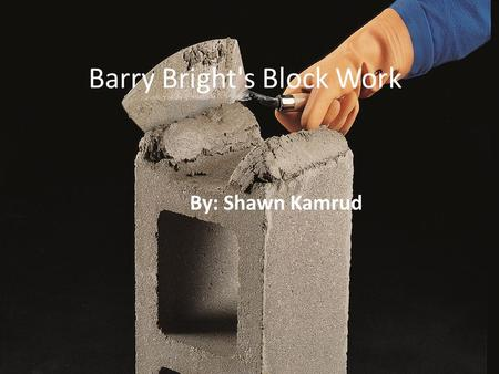 Barry Bright's Block Work By: Shawn Kamrud. Barry Bright's Block Work By: Shawn Kamrud.