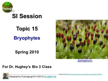 Designed by Pyeongsug Kim ©2010 SI Session Topic 15 Bryophytes Spring 2010 For Dr. Hughey's Bio 3 Class Picture from