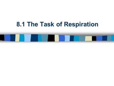 8.1 The Task of Respiration