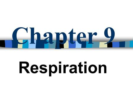 Chapter 9 Respiration Respiration The transfer of stored energy in food molecules to a form usable by the organism Involves the exchange of gases between.