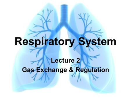 Respiratory System Lecture 2 Gas Exchange & Regulation.