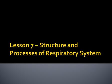 The human respiratory system has four important structural features that enable it to function properly:  A thin permeable respiratory membrane through.
