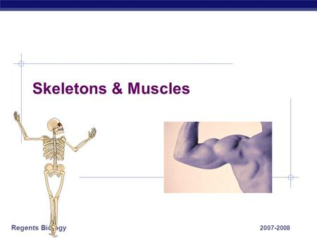 Regents Biology 2007-2008 Skeletons & Muscles Regents Biology Animal Movement What are the advantages of being mobile? 1. Find food 2. escape 3. migrate.