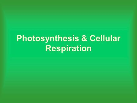 Photosynthesis & Cellular Respiration. What is photosynthesis? It is the most important chemical reaction on our planet.