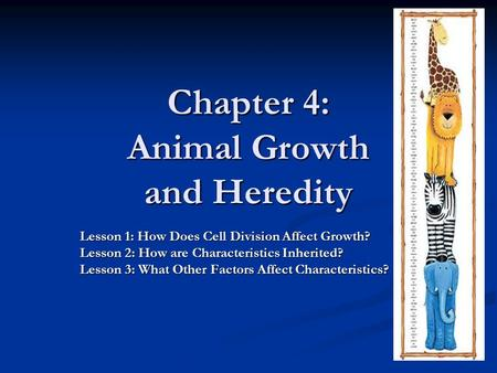 Chapter 4: Animal Growth and Heredity Lesson 1: How Does Cell Division Affect Growth? Lesson 2: How are Characteristics Inherited? Lesson 3: What Other.