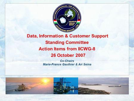 Data, Information & Customer Support Standing Committee Action Items from IICWG-8 26 October 2007 Co-Chairs Marie-France Gauthier & Ari Seina.