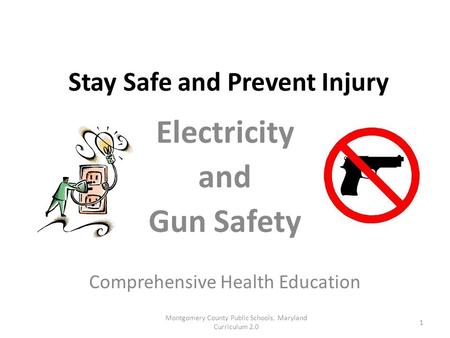 Stay Safe and Prevent Injury Electricity and Gun Safety Comprehensive Health Education Montgomery County Public Schools, Maryland Curriculum 2.0 1.