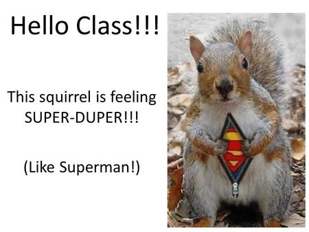 Hello Class!!! This squirrel is feeling SUPER-DUPER!!! (Like Superman!)