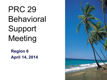 PRC 29 Behavioral Support Meeting Region 6 April 14, 2014.