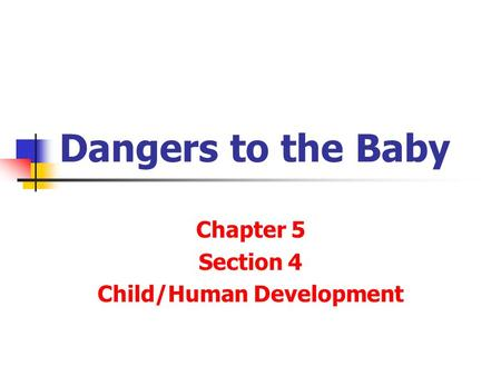 Dangers to the Baby Chapter 5 Section 4 Child/Human Development.