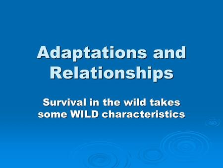 Adaptations and Relationships Survival in the wild takes some WILD characteristics.