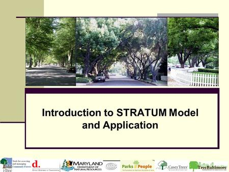 Introduction to STRATUM Model and Application. What makes STRATUM different? Street trees, not entire urban forest Costs, not only benefits Management.