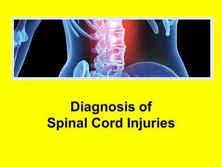 Diagnosis of Spinal Cord Injuries. Traumatic Spinal Cord Injury Immediate loss of strength Immediate numbness in legs and arms Level of injury can predict.